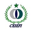 logo-CEIEFI